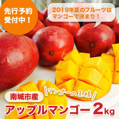 先行予約!南城市産アップルマンゴー2kg
