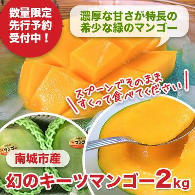 先行予約!「究極の亜熱帯果実」幻のキーツマンゴー2kg