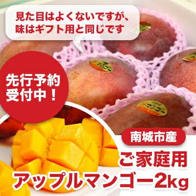 先行予約!ご家庭用南城市産アップルマンゴー2kg