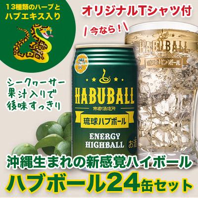 琉球ハブボール24本 オリジナルT-シャツセット