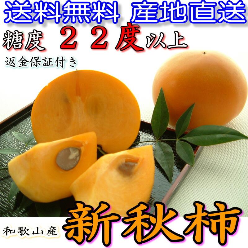 送料無料 産地直送 糖度 22度以上 返金保証付き 和歌山県産新秋柿