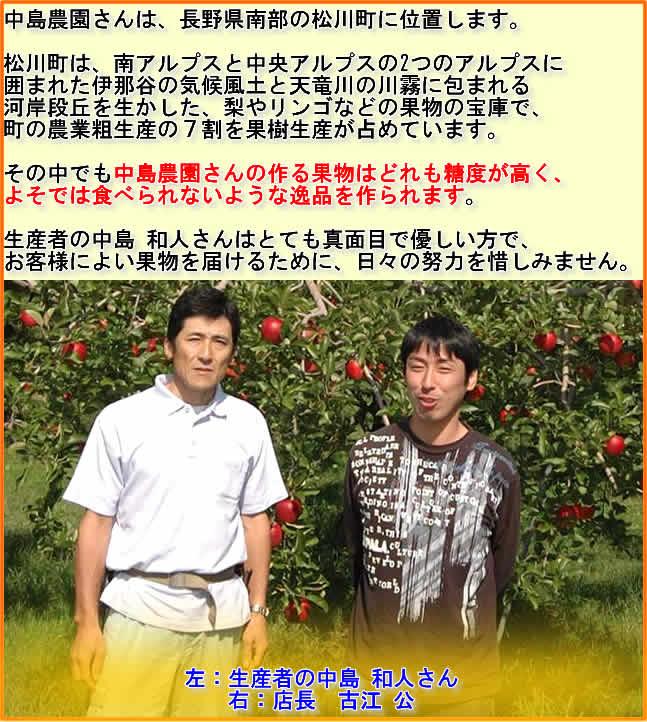 中島農園さんは、長野県南部の松川町に位置します。  松川町は、南アルプスと中央アルプスの2つのアルプスに 囲まれた伊那谷の気候風土と天竜川の川霧に包まれる 河岸段丘を生かした、梨やリンゴなどの果物の宝庫で、 町の農業粗生産の7割を果樹生産が占めています。  その中でも中島農園さんの作る果物はどれも糖度が高く、 よそでは食べられないような逸品を作られます。  生産者の中島 和人さんはとても真面目で優しい方で、 お客様によい果物を届けるために、日々の努力を惜しみません。  左:生産者の中島 和人さん 右:店長 古江 公