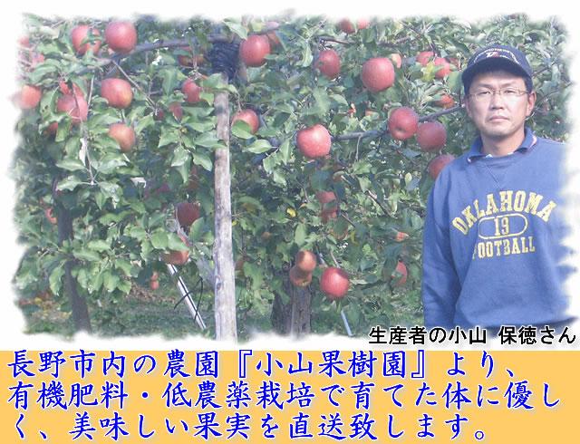 長野市内の農園『小山果樹園』より、 有機肥料・低農薬栽培で育てた体に優しく、 美味しい果実を直送致します。