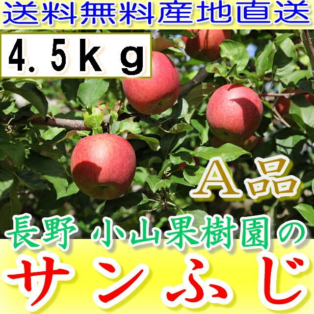 【送料無料・産地直送】 小山果樹園の 特選サンふじ 4.5kg