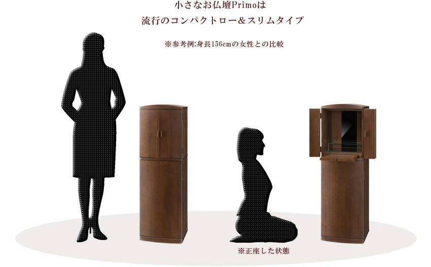 身長156cmの女性との比較