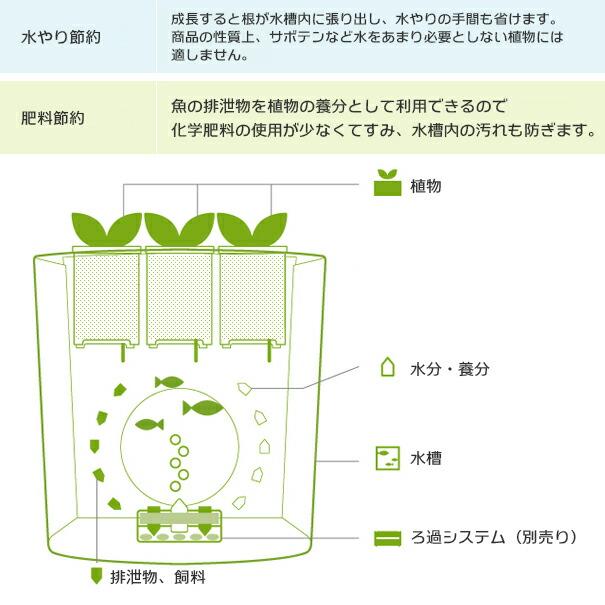 デザイナーズフィッシュタンク/デザイン水槽/新スタイルアクアリウム
