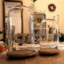 ジャンボグラスドーム ガラスドーム