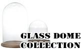 ガラスドーム ディスプレイドーム ガラスケース