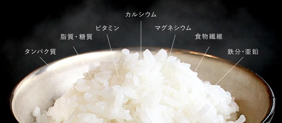 HIBARIの栄養素