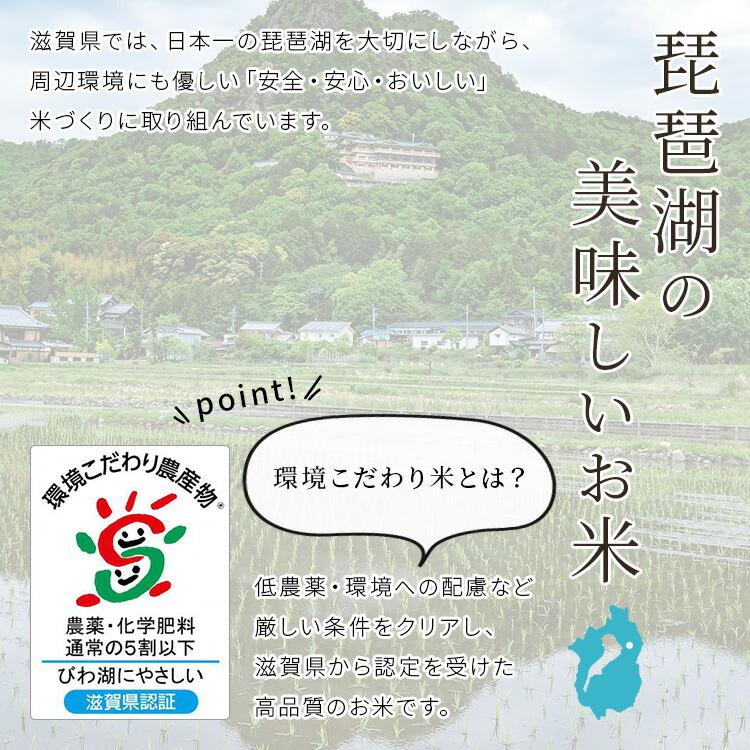琵琶湖の美味しいお米