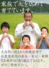 家族で心を込めて育てています。大自然に囲まれた田園地帯で低農薬栽培の安全・安心・新鮮なお米作りに取り組んでおります。ぜひご賞味下さい。