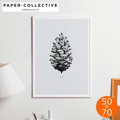 ポスター デンマーク アートポスター 松ぼっくり