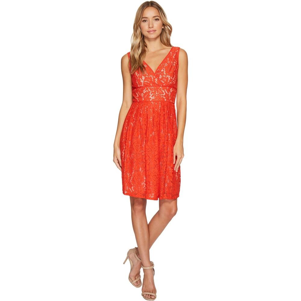 646af0474400e 「アドリアナ パペル(Adrianna Papell)」について  ドレスを中心としたエレガントなレディースウェアを展開するアメリカブランドとして確立している。