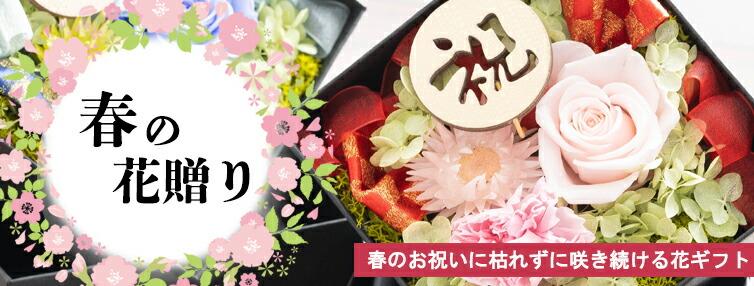 春の花贈り