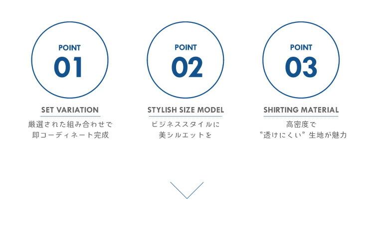 flm-s51_point.jpg