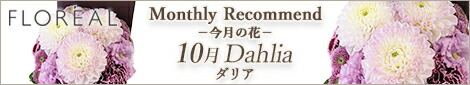 Monthly Recommend