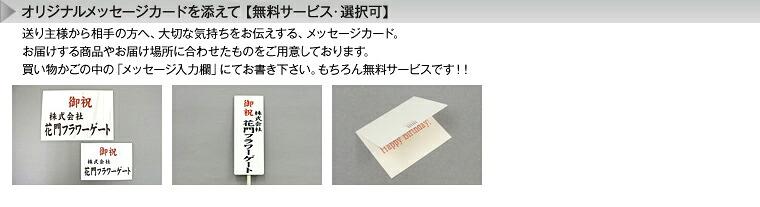 オリジナルメッセージカードを添えて