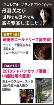 丹羽英之が世界でも日本でも賞を受賞しました!!
