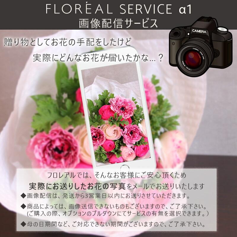 画像配信サービス