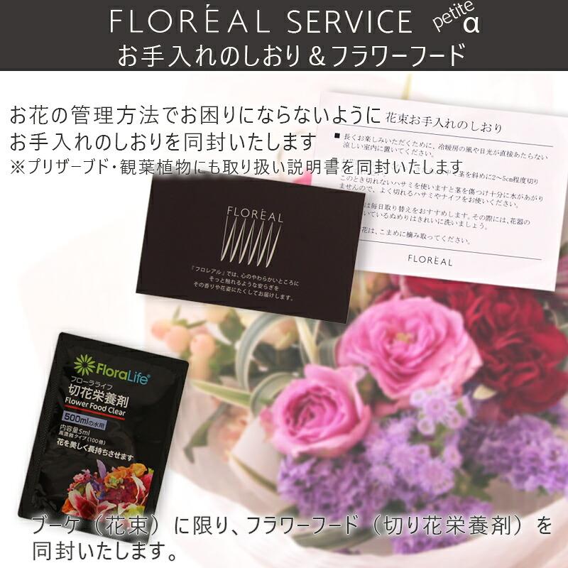 お花のお手入れ方法のしおり