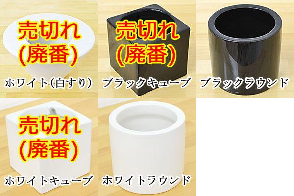 ミニ観葉植物 陶器鉢のイメージ