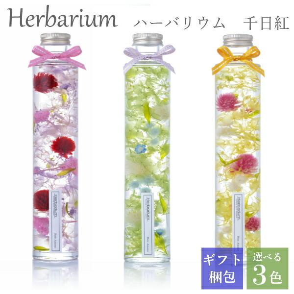 ハーバリウム ギフト プレゼント 千日紅 ロングボトル 丸瓶 全3色