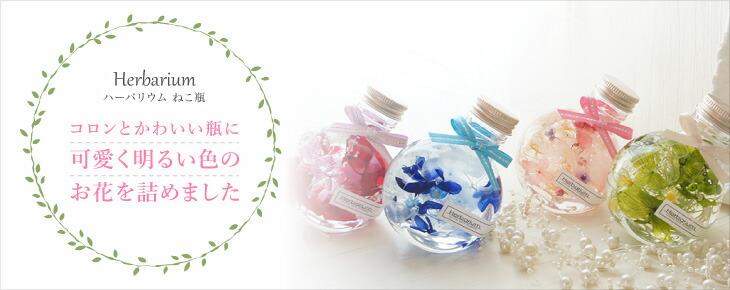 ハーバリウム ギフト プレゼント ミニサイズ コロンと可愛い ねこ瓶タイプ 全4色
