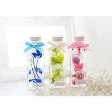 ハーバリウム ギフト プレゼント ミニサイズ丸瓶 全3色