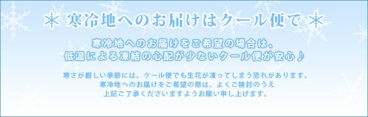 寒冷地へのお届けはクール便で!寒冷地へのお届けをご希望の場合は、低温による凍結の心配が少ないクール便が安心♪寒さが厳しい季節には、クール便でも生花が凍ってしまう恐れがあります。寒冷地へのお届けをご希望の際はよくご検討のうえ上記ご了承くださいますようお願い申し上げます。