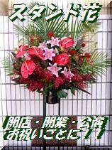スタンド花 新宿四谷花屋シャムロックのスタンド花