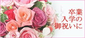 卒業・卒園・入学・ギフト・花・アレンジ・花束・送料無料