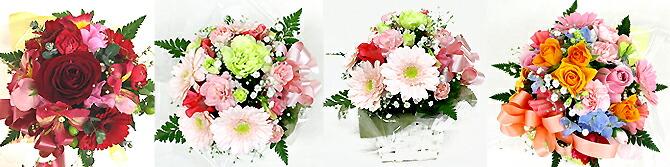 お花 見本 ギフト