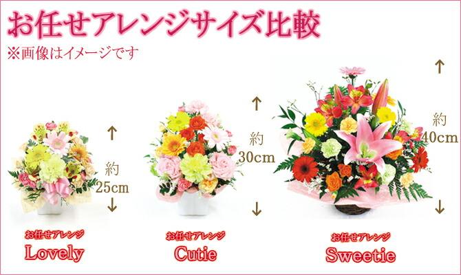 お花のサイズ比較