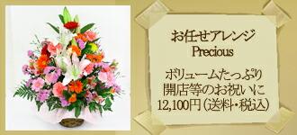 お任せ Precious 10000