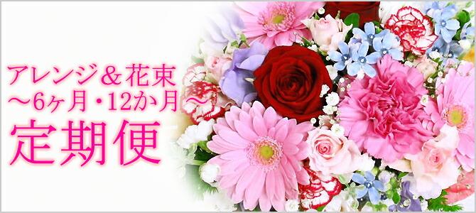 定期便 記念日 御礼 お祝い