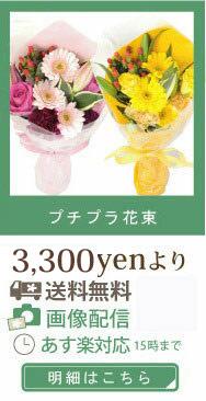 プチプラ花束【送料無料