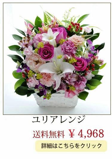ボックスアレンジ4860