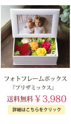 プリザミックス3980