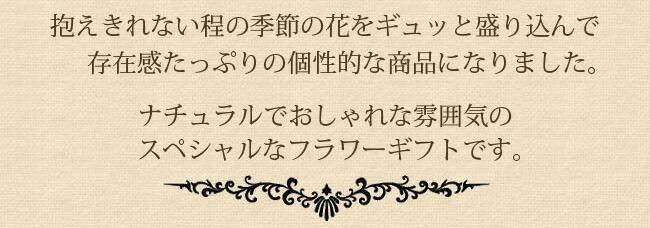 bas_gra05.jpg