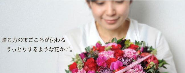 bas_gra08.jpg