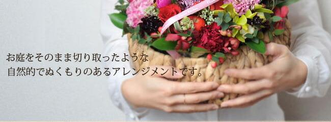 bas_gra09.jpg