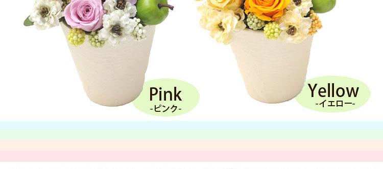 ピンク・イエロー