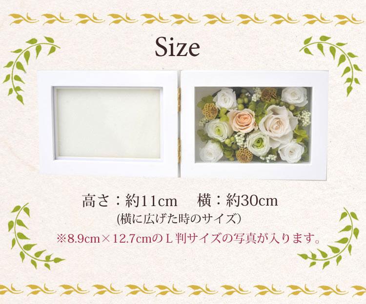 サイズ11×30