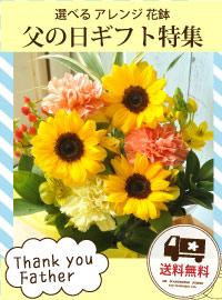 父の日の花特集