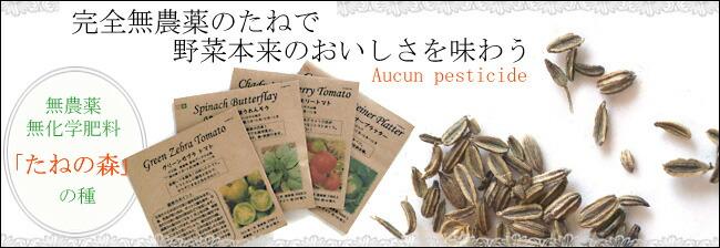 無農薬・種の森