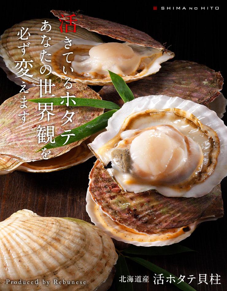 北海道のとれたぷりぷりのホタテ-北海道産活ホタテ-
