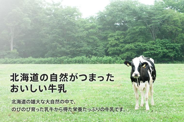 北海道の自然がつまったおいしい牛乳