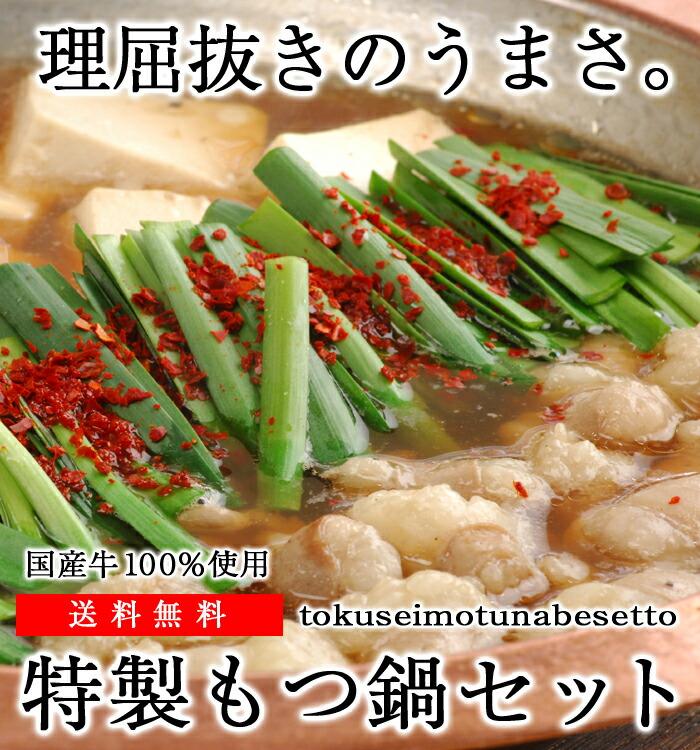 特製もつ鍋セット【送料無料】もつ鍋 モツ鍋