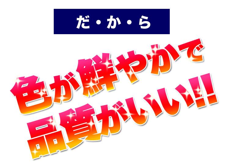 cz-posyon2_09.jpg