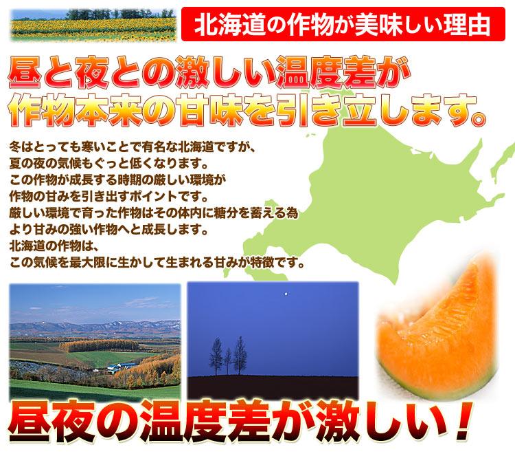 n-meron_re.jpg